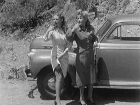 1930s - a 1930s Stag Stock Footage Video (100% Royalty